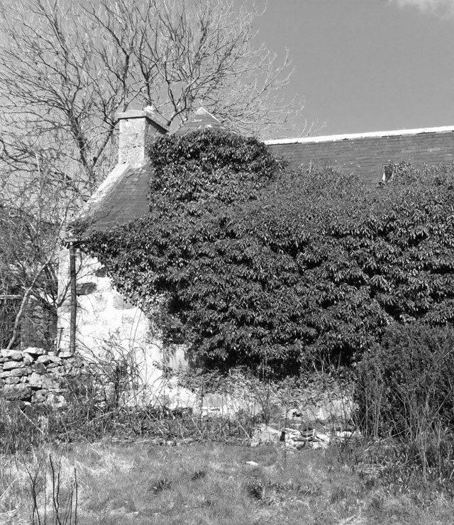 Mill of Kelly